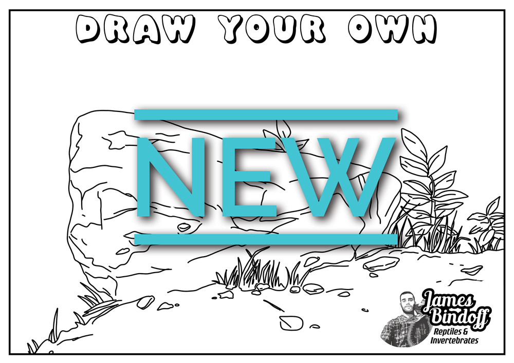 Draw Your Own Colouring In Page Download