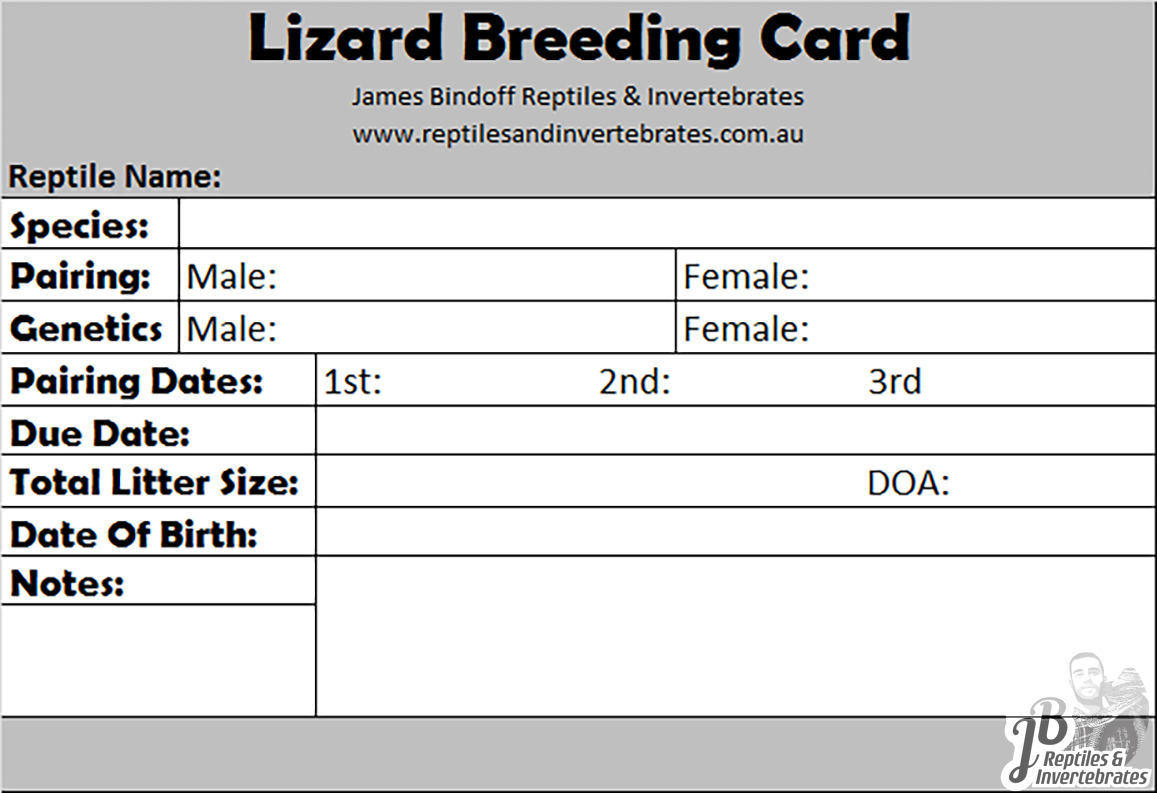 Lizard Breeding Card